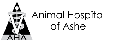 Animal Hospital of Ashe